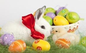 Картинка праздник, корзина, кролик, пасха, травка, цыпленок, крашенные яички
