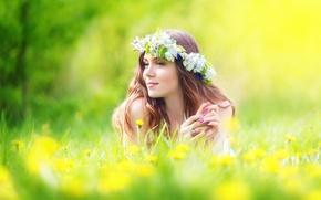 Обои шатенка, венок, цветы, одуванчики