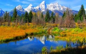 Картинка осень, небо, трава, снег, деревья, горы, озеро, отражение, Вайоминг, США, grand teton national park