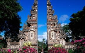 Картинка Цвет, Бали, Индонезия