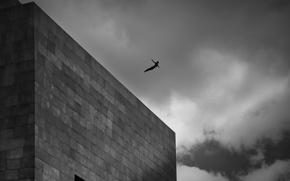 Картинка humano, libertad, saltador, arquitectura