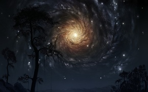 Обои Деревья, звезды, галактика