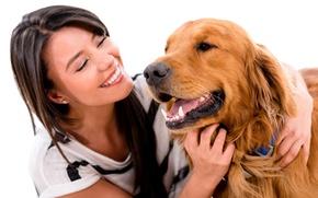 Обои улыбка, девушка, Ретривер, белый фон, брюнетка, собака