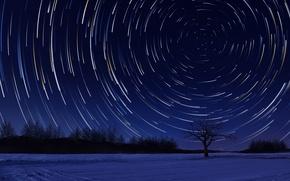 Обои небо, звезды, деревья, природа, арт
