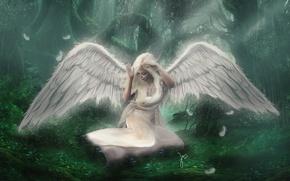 Картинка лес, девушка, лицо, крылья, сидит