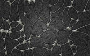 Обои клетки, оболочки, серый