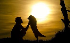 Картинка солнце, друг, собака, мужчина, силует