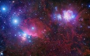Обои космос, туманность, звёзды, созвездие орион, конская голова