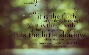 Обои зеленый, жизнь, фон, цитата, блики, обои