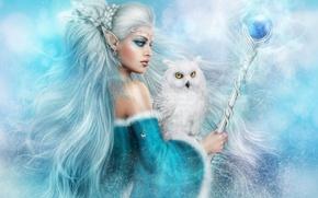 Картинка зима, девушка, сова, волосы, фэнтези, посох, фолшебница