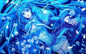 Обои hatsune miku, синий, психоз