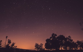 Картинка sky, trees, nature, stars, people, dusk, group