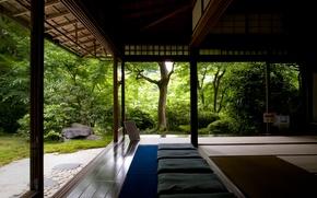 Картинка лес, деревья, поиск, дом, релакс, тишина, медитация, храм, дзен