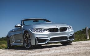 Картинка бмв, BMW, кабриолет, Cabrio, F83