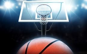Картинка огни, сетка, мяч, кольцо, щит, баскетбол