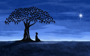 Картинка дерево, звезда, Ночь, медитация