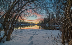Картинка небо, вода, облака, снег, деревья, озеро, Зима