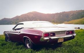Обои car, Muscle, Dodge, Challenger