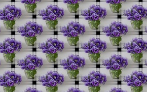 Картинка цветы, букет, текстура, арт, анютины глазки, виола