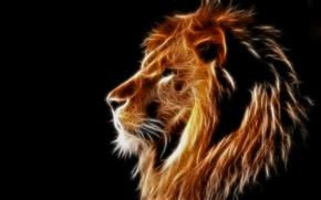 Картинка лев, грива, профиль, чёрный фон