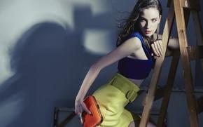 Картинка девушка, поза, стиль, модель, стремянка