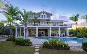 Картинка пальмы, вилла, вечер, бассейн