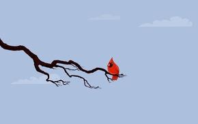 Картинка птица, ветка, кардинал