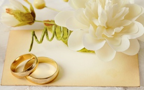 Картинка цветы, кольца, свадьба, flowers, background, ring, soft, wedding, lace