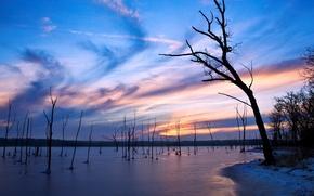 Обои Деревья, вечер, озеро, лед, зима