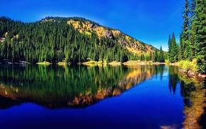 Картинка лес, природа, горное озеро