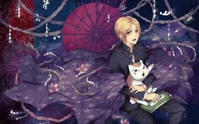 Картинка кот, магия, узор, зонт, веревки, плащ, natsume yuujinchou, тетрадь дружбы нацумэ, takashi natsume, nyanko-sensei