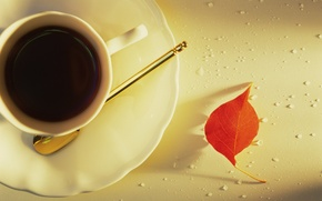 Обои листок, кофе, чашка