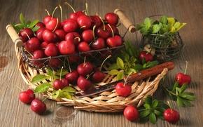 Обои ягоды, мята, вишни, красные, корзина, листья