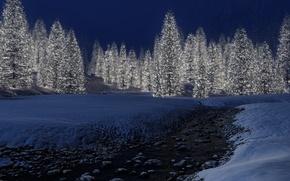 Картинка зима, снег, огни, новый год, Елки