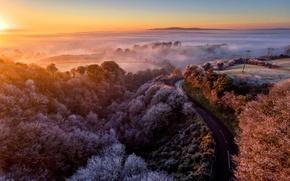 Картинка road, morning, fog, sunrise, dawn, dew, freeze, winter is coming, mist, frost, power line