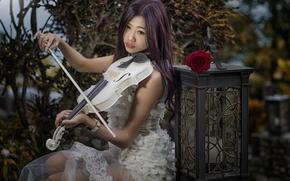 Картинка девушка, настроение, скрипка, роза, фонарь, азиатка