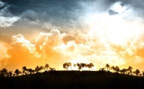 Картинка облака, свет, закат, пальмы