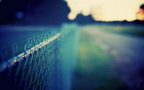 Картинка дорога, зелень, небо, трава, макро, фон, сетка, забор, цвет, даль, луг, wallpapers, обои для рабочего ...