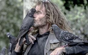 Обои дружба, птицы, друзья, мужик, голуби