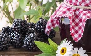Картинка ягоды, банка, ежевика, варенье, berries, jam, blackberries, Bank, chamomile flowers, цветки ромашки