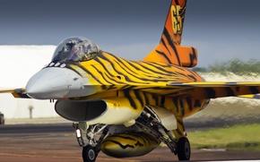 Картинка оружие, самолёт, Belgium Air force, FA-77