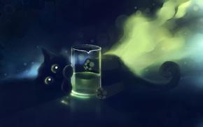 Обои apofiss, стакан, котенок, кот