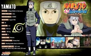 Картинка Naruto, art, жилет, ninja, Yamato, Коноха, наруто ураганные хроники, Masashi Kishimoto, досье, анкета, повязка на …