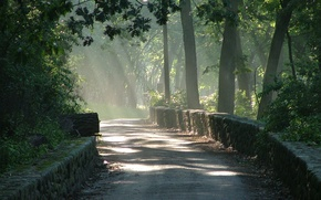 Картинка дорога, лес, солнце, свет, fog, sunrise