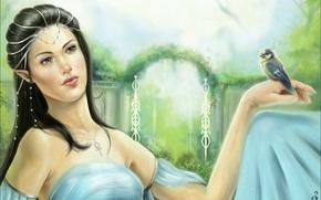 Обои фэнтези, девушка, арт, птица, эльфийка, Meneliel