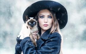 Картинка кошка, девушка, Alessandro Di Cicco