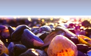 Картинка light, beach, sea, mood, color, shore, shells