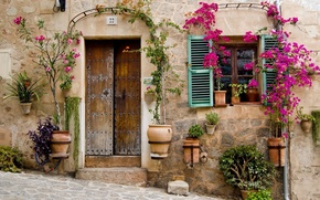 Картинка цветы, окна, дома, двери, house, архитектура, flowers, window, architecture, door
