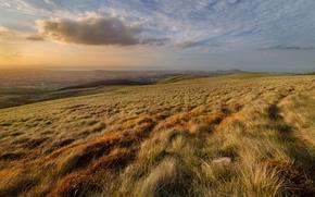 Картинка волны, поле, трава, рассвет, холмы