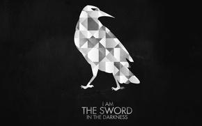 Картинка темный, dark, ворон, crow, Игра Престолов, Game of Thrones, Night Watch, Ночной Дозор